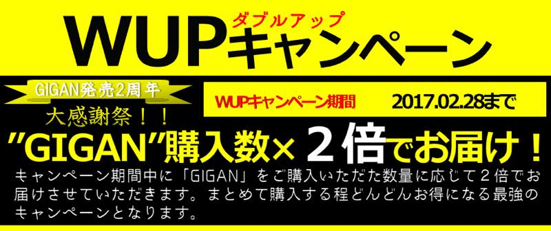 th_GIGAN_WUP_PC